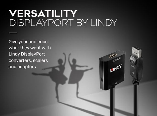 DisplayPort Converters